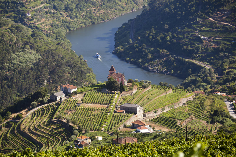 Wine Valley Cruise Douro River Portugal