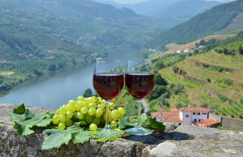 Winery Douro Valley Portugal