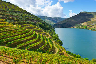 Douro River Wine Region Portugal